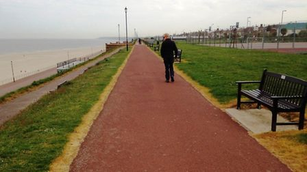 Gorleston Cliffs, where residents are concerned about weedkiller use. Photo: Charles Shelbourne