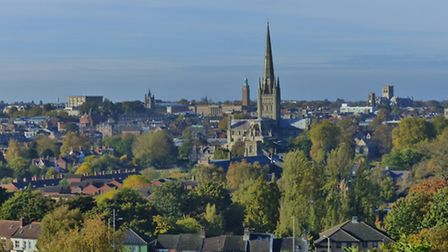 View of Norwich City from Mousehold. Photo: Pamela Culley