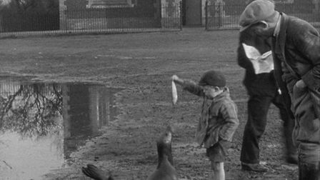 An image from the film The Village Pet, which tells the story of a seal which was adopted by the vil