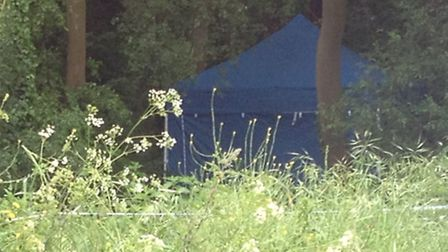 Police set up a tent in the woods near their house in Weybread where Peter Stuart's body is thought