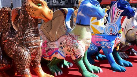 The GoGoDragons! were a huge hit in Norwich. Picture: DENISE BRADLEY
