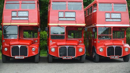 The firm's three vintage buses. Picture: Ian Burt