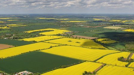 Fields of rapeseed looks very colourful from the air but are not so pleasant to drive through for ha