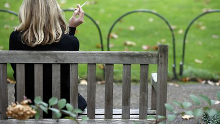The smoking ban around play areas can not be enforced by law so would be voluntary. Photo: Jonathan