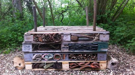 The insect hotel created by the Women in Wellies group at Fairhaven Woodland and Water Garden. Pictu
