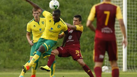 Sebastien Bassong could make his first senior appearance of the season for Norwich City in Tuesday's