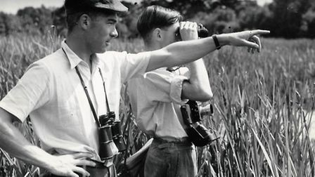 Ornithologist members of the society study the birdlife in the Cawston area around the River Mermaid