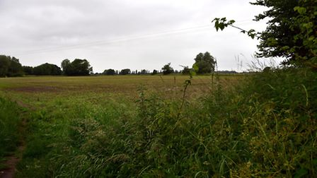 Plans have been put forward for fields off Cuffer Lane, near Moat Lane and Saint Martins Gardens in