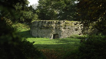 Picture of autumn at New Buckenham Castle. Nikon D2X with 50mm lens 1/1000 sec at F/4. Photo: Angela