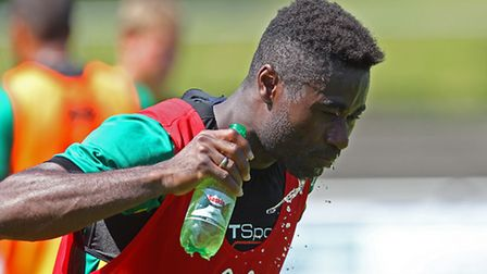 Norwich City return to Austria later this month to step up their preparations for the Championship k