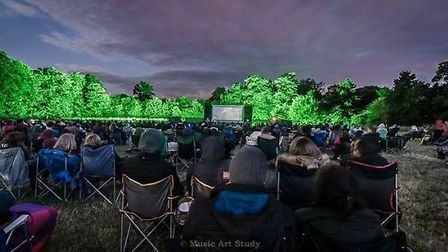 One of the Outdoor Cinema Club screenings from last year. PICTURE: Music Arts Study