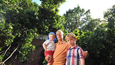 Terry Phillips, with his grandchildren Jack and Tommy Phillips Andrew, with the remains of the oak t