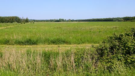 One of the proposed silica sand sites in Dersingham. Picture: Ian Burt