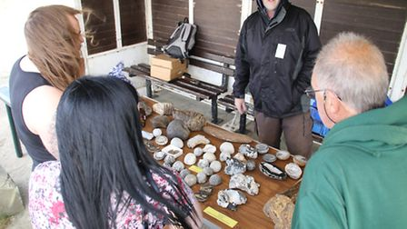 Visitors at the fossil roadshow in West Runton