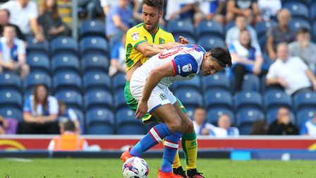 Norwich City defender Ivo Pinto rates Carlos Carvalhal's work at Sheffield Wednesday ahead of meetin