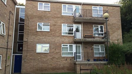 Police were called to a top-floor flat in Netherwood Green in Norwich.
