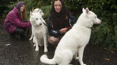 Suzie Carpenter with her daughter Willow and Husky dogs they feared they may have to get rid of due
