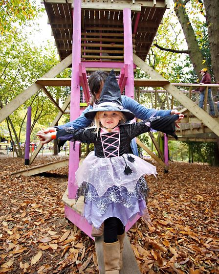 Bewilderwood near Wroxham is staging a host of spooky events this half term including lantern making