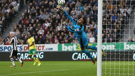 Cameron Jerome gives Norwich City a 2-1 lead at Newcastle. Picture: Paul Chesterton/Focus Images