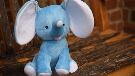 The Dementia Friendly Dereham mascot elephant, to be named by the children of Dereham in a competiti
