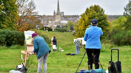 Paint Out Norwich at Mousehold Heath in 2015. Picture: ANTONY KELLY