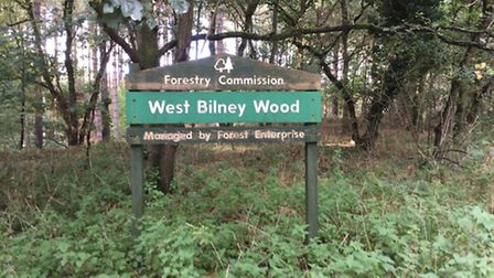 Picture: Protect West Bilnery Wood group.