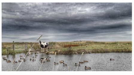Beautiful North Norfolk by @be1photo