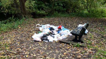 The dumped rubbish. Picture by: Sue MacDonald