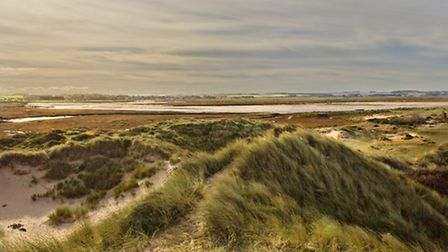 Views from Gun Hill in Burnham Overy. Picture by David Harper