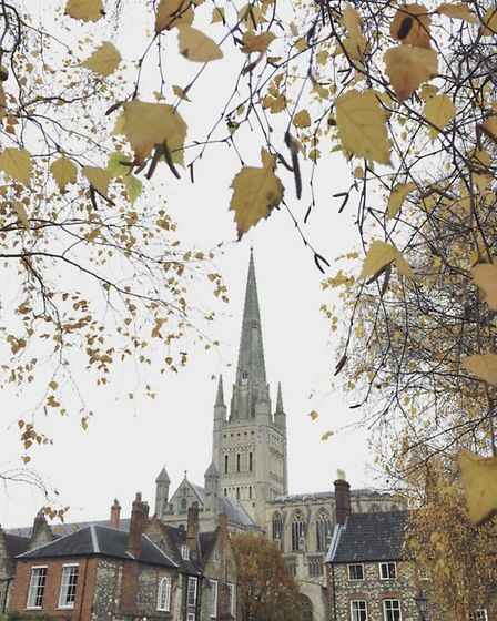 The last of Autumn's offerings by @powlesey