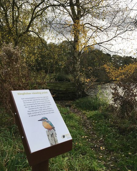 The British Trust for Ornithology has opened a new discovery trail at its Nunnery Lakes reserve in T