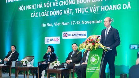 The Duke of Cambridge speaking at the Hanoi Conference on Illegal Wildlife Trade in Vietnam. Prince