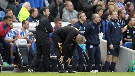 Norwich City boss Alex Neil endured his toughest day in management at Brighton. Picture by Paul Ches