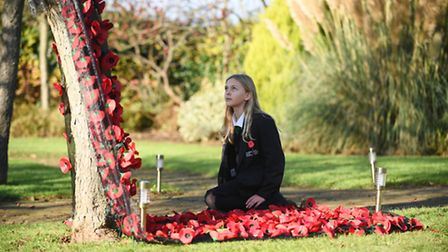 Downham Market Academy students have been working with the town council to rejuvenate the Memorial G