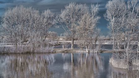 Beccles Fishing Lakes. Photo: Adee Tallents
