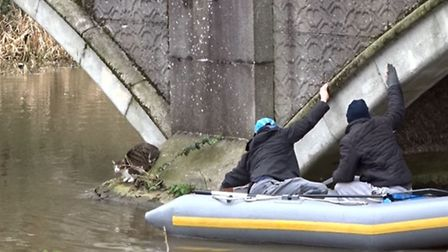 Claudia the cat was rescued after being stranded beneath a bridge in Norwich