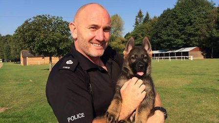 Jim Wells is the handler for Gizmo, a 9-week-old German Shephard trainee in Norfolk Police's dog uni