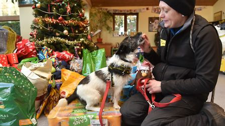 Dog treats at Christmas, at the NCDL in Snetterton.Miranda Sabey, training and behaviour advisor wit
