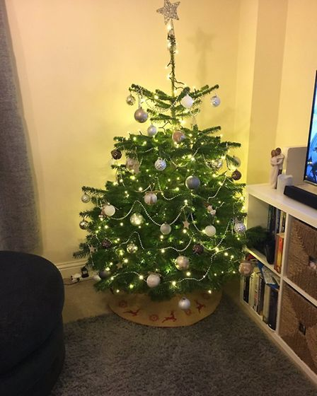 Kat Campbell's Christmas tree. Photo by Kat Campbell