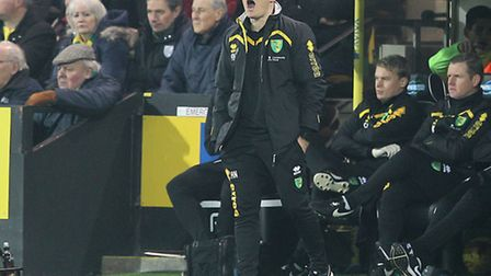 Norwich City manager Alex Neil has presided over seven defeats in nine league games. Picture by Paul