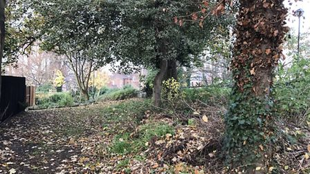 The area around Rosary Road and Old Library Woods, where residents are concerned about drug dealing