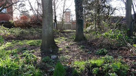 A view of part of the Paupers' Graveyard in Aylsham. Picture: WENDY SADLER