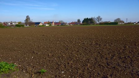 The field off Harvey Lane, on the left just past Limmer Avenue in Dickleburgh where there is a propo