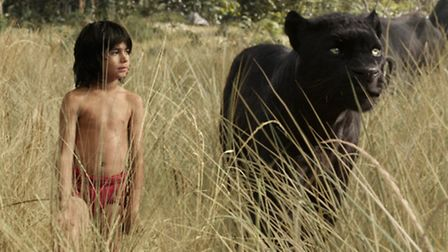The Jungle Book, directed by Jon Favreau, had Neel Sethi as Mowgli in a real-life jungle filled with