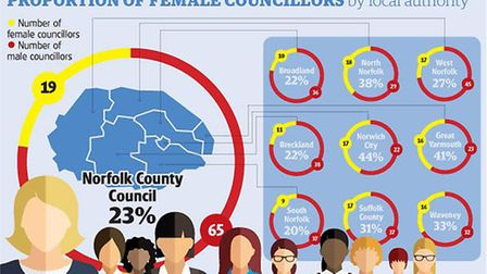 Women in Councils graphic.