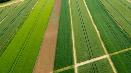 Aerial view of Frontier Agriculture's trials site. Picture: John Hawthorne.