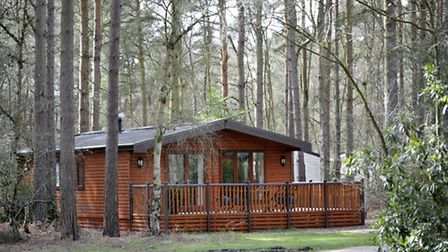 A woodland lodge at Kelling Heath Holiday Park. Picture: Graham Corney