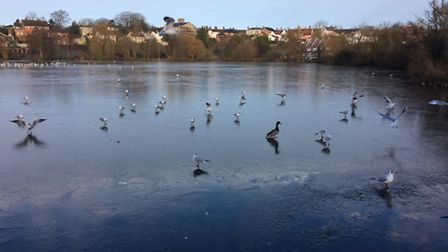 Diss Mere frozen over 18.01.17. Picture: Rebecca Murphy