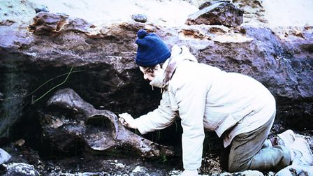 Margaret Hems pictured on the dig at West Runton beach, the site where she found the West Runton ele