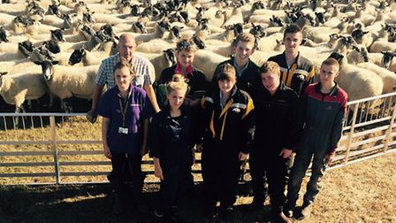 New sheep flock at Easton and Otley College. Pictured: Easton students with the new ewes.